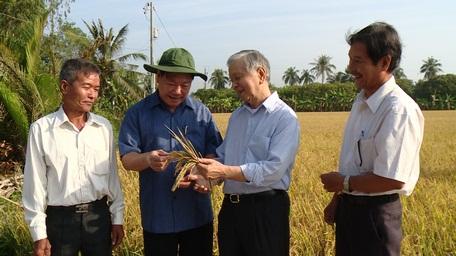 Bí thư Tỉnh ủy Vĩnh Long Trần Văn Rón (thứ 2 từ trái sang) và ông Phạm Chánh Trực- nguyên Phó Trưởng Ban Kinh tế Trung ương (thứ 3 từ trái sang), thăm ruộng lúa hữu cơ ở xã Mỹ Lộc (Tam Bình- Vĩnh Long).